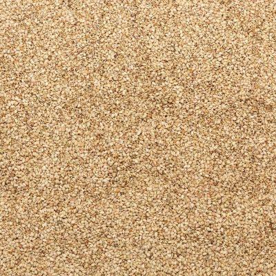 Biologisch Sesamzaad (ongepeld) | Bionoot - SmaakGenot