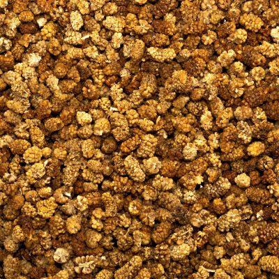 Biologische Moerbeibessen   Bionoot - SmaakGenot